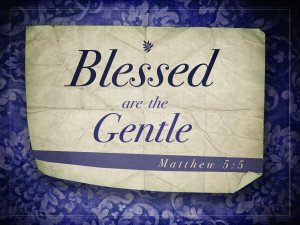 Read more about the article Matthew 5v5 A True Christian Will Be Meek