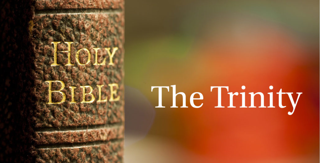 The Trinity Doctrine Banner