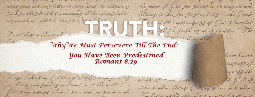Romans 8:29 predestined banner