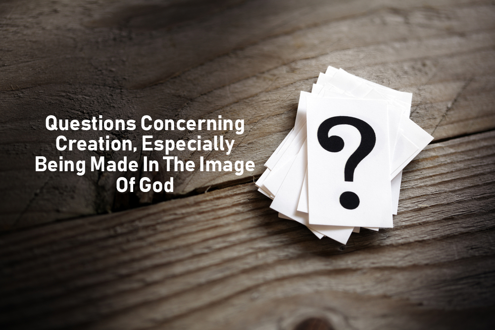 Genesis 1 – Answering Questions About Creation And Made Made In The Image of God