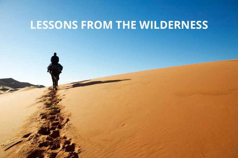 lessons from the wilderness series