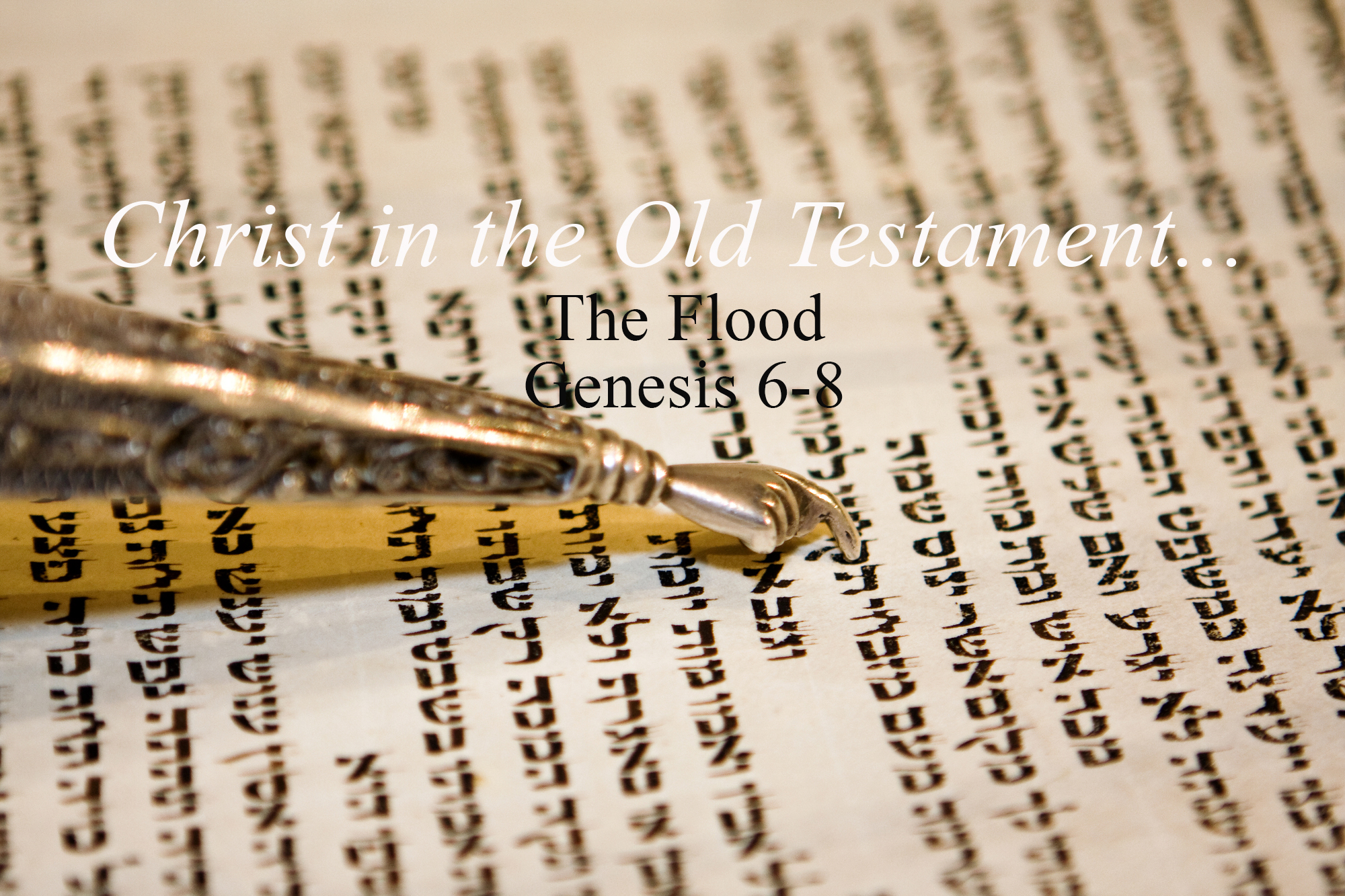 The Flood Genesis 6-8