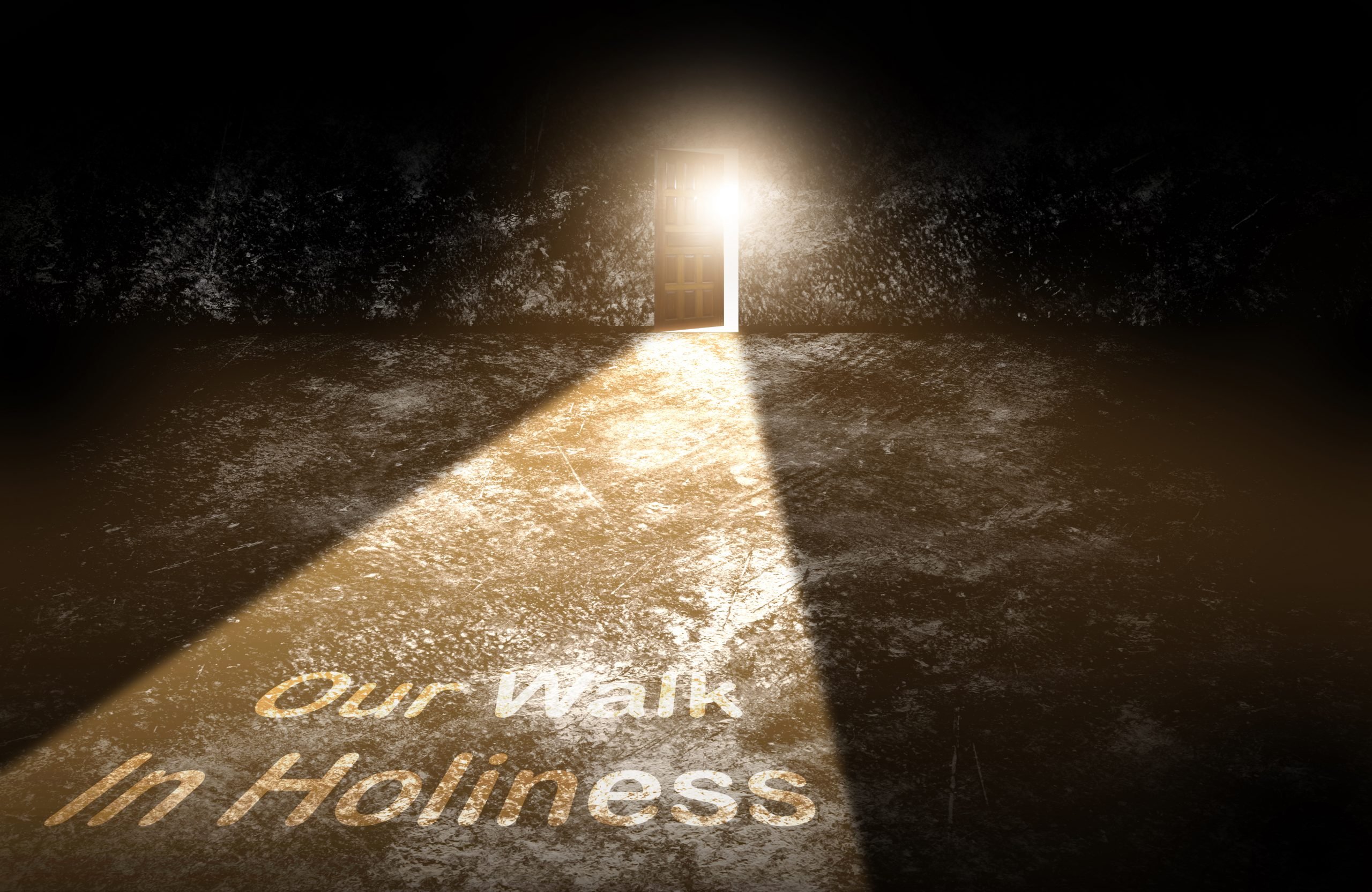 Read more about the article 1 Peter 1 V 13-25 Our Walk In Holiness